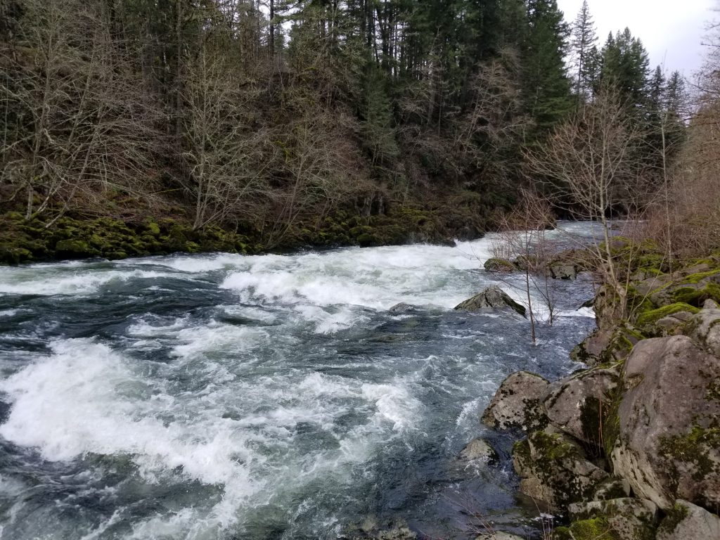 "The Cazadero Section of the Clackamas River ""The Unknown Run"""